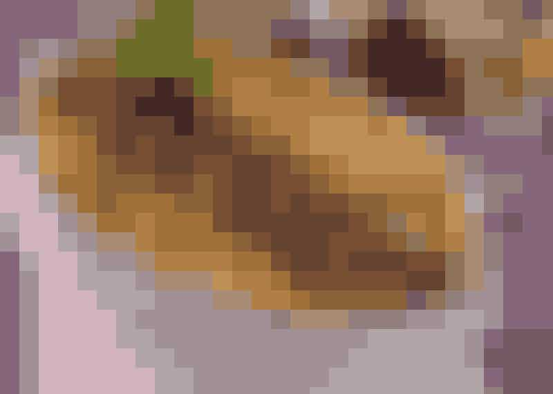 Fläskfilégratäng med färskost och rotsaker– perfekt bjudrätt!