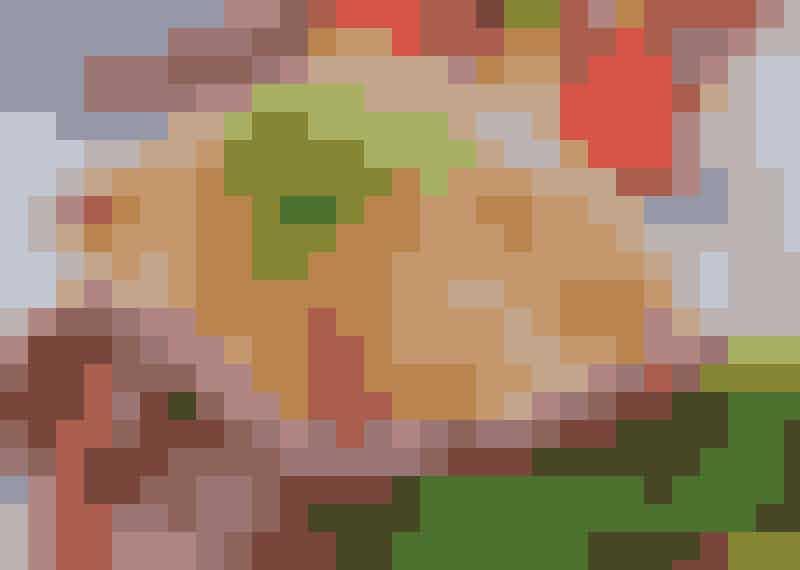 Kassler under krämigt täcke med paprika.