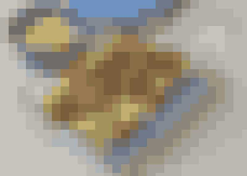Potatisgratäng med köttfärs
