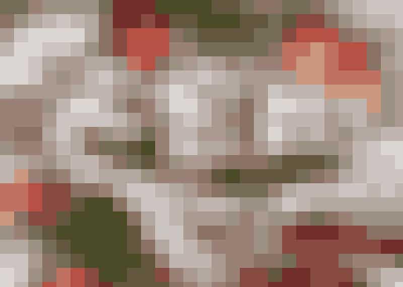 Pepparkaksrutor i långpanna med frosting av färskost.