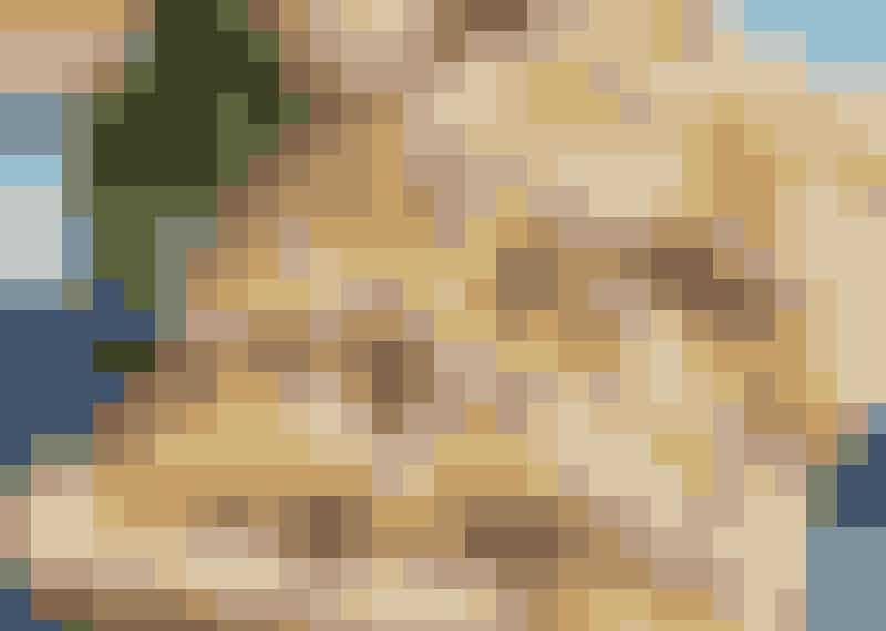 Wieneråttor – vaniljfyllda bullar på kondisvis.